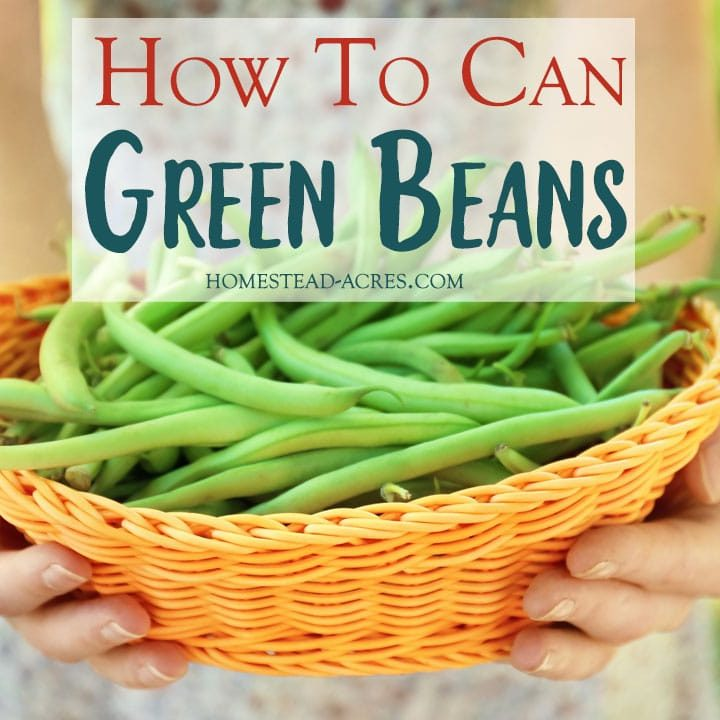 How To Can Green Beans Homestead Acres