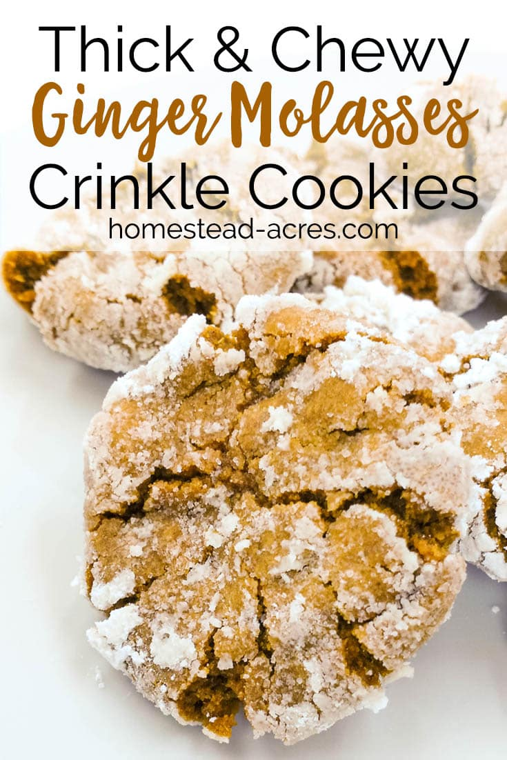 Thick Chewy Ginger Molasses Crinkle Cookies Homestead Acres