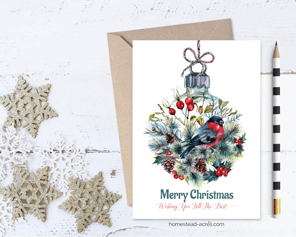image relating to Printable Photo Christmas Card known as Printable Xmas Card: Finch Ornament Merry Xmas