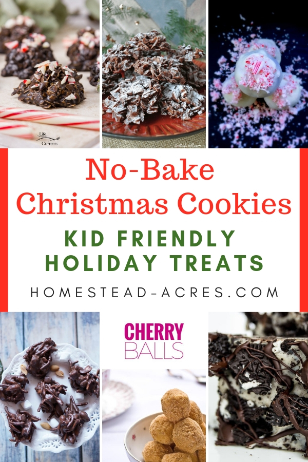 25 No Bake Christmas Cookies Easy Christmas Treats Homestead Acres