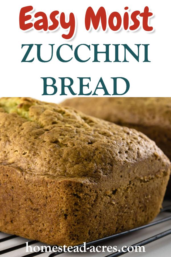 easy moist zucchini bread  homestead acres