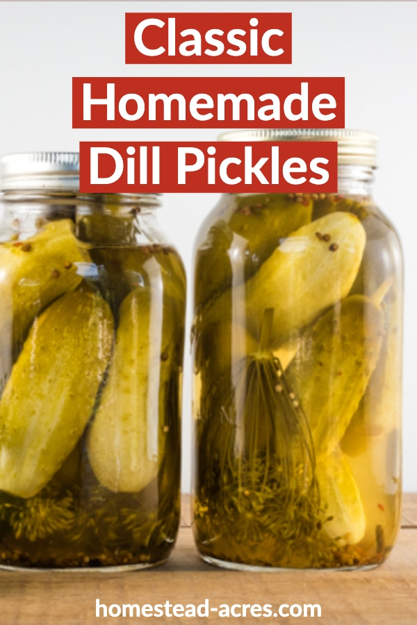 Classic homemade dill pickles text overlaid on a closeup photo of pickles in canning jars.