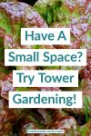 Have A Small Space Try Tower Gardening text overlaid on green and red lettuce.