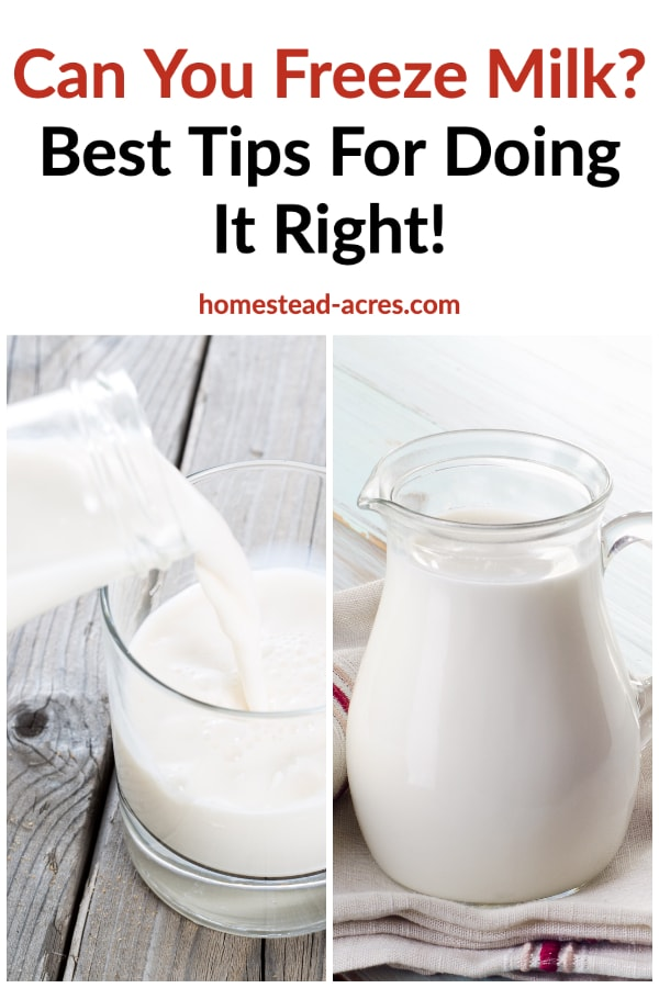 Can you freeze milk? Best tips for doing it right! Text overlaid on a photo collage of milk in a glass jug sitting on a wooden table, second photo milk being poured into a glass.