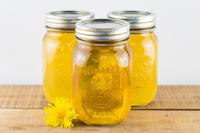 3 pint jars of dandelion syrup canned and sitting on a wooden table with a dandelion flower next to them.
