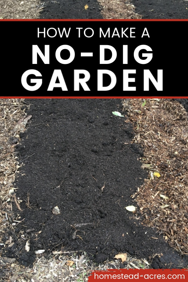 How to make a no-dig garden text overlaid on a photo of garden beds made with compost, mulch, and cardboard.